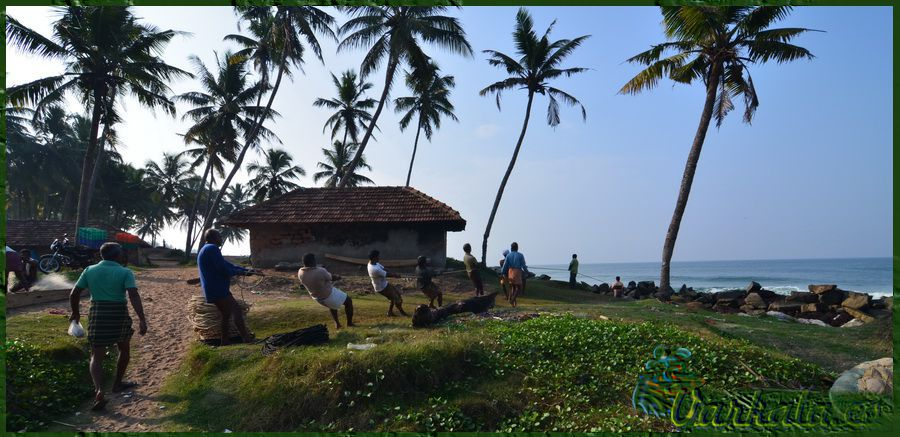 Varkala_Beach_Kerala_1.jpg