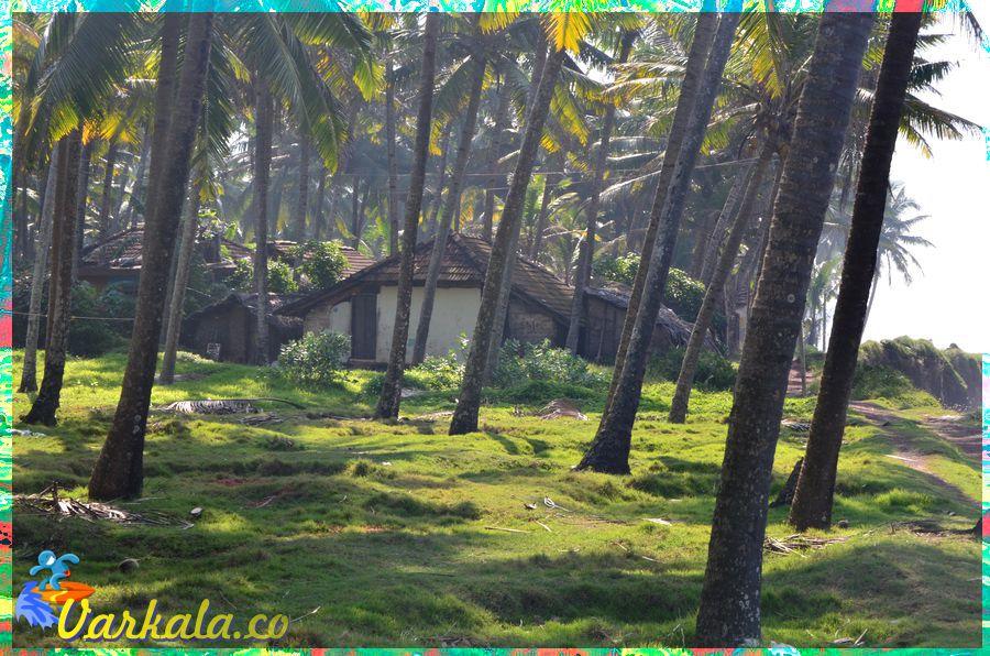 Varkala_Beach_Kerala_8.jpg